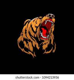 aggressive bear grizzly head vector design