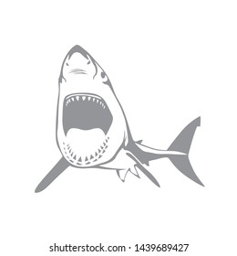 Aggressive wild shark vector illustration