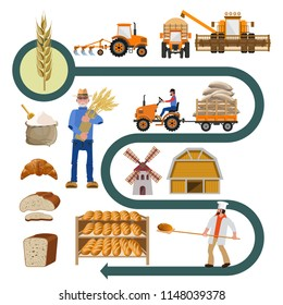 Agribusiness. Agriculture concept set with cultivation of wheat and the history of bread making. Vector illustration isolated on white background