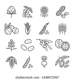 Agricultural commodities of vegetable origin linear icons set. Main plant products of the agro-industrial complex. Nuts, Legumes, Oil, Grain, Sugar, Coffee, Cocoa