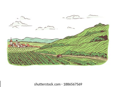 Agricultural farm with fields planted with vineyards. Beautiful green rural with grape trees, hills and village houses. Vector line art illustration