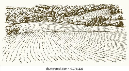 Landwirtschaftliche Landschaft. Handgezeichnete Illustration.