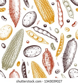Agricultural plants background. Gluten free food seamless pattern. Vector vegetables beans, roots, seeds drawing in engraved style. Great for packaging, menu, label. High detailed.