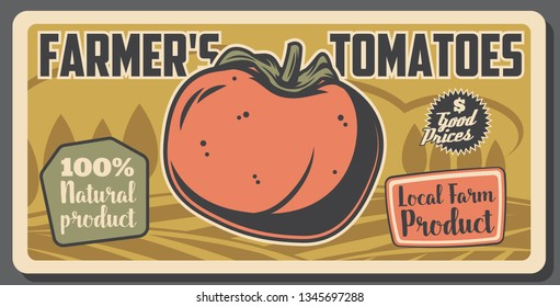 Agriculture and farming, tomato vegetable, local farm product market. Vector crop or vegetable harvest, natural food production. Agrobusiness in village countryside, healthy nutrition