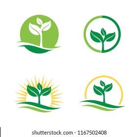 agriculture natural plant fertile vector for logo design template