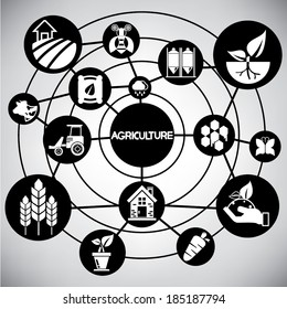 agriculture network, info graphic