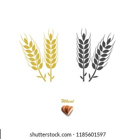 Agriculture vector. Wheat. Whole grains. Bread or loaf