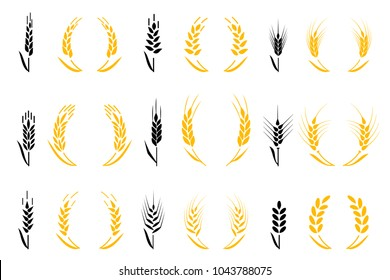 Agriculture wheat. Wheat Ears Icons and Logo Set. For Identity Style of Natural Product Company and Farm Company. Organic wheat, bread agriculture and natural eat. Cereals icon set.