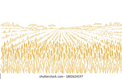 Agriculture wheat field. Hand drawn sketch. Rural landscape panorama. Cereal harvest. Dry grass meadow. Contour vector line. Bread wrapper. Copy space.