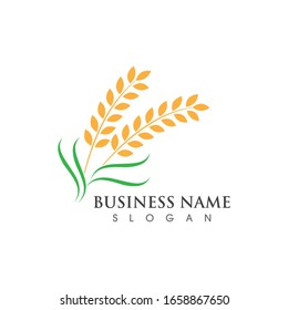 Agriculture wheat logo and symbol vector