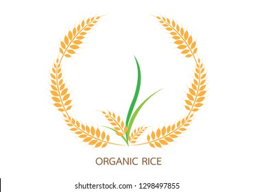 Agriculture wheat Logo Template vector icon design.vector illustration EPS 10.