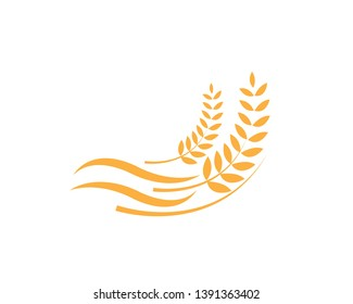 Agriculture wheat Logo Template vector icon design - Vector