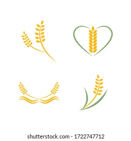Agriculture wheat Logo Template vector icon design illustration