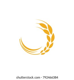 Agriculture wheat logo vector template