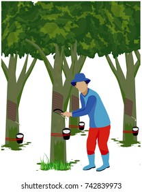 agriculturist cut rubber tree for latex vector design