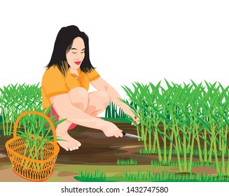 agriculturist harvest vegetable vector design