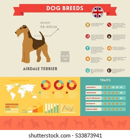 Airdale dog infographic illustration vector icons set