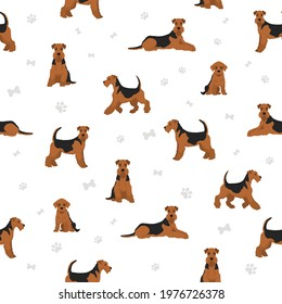 Airedale terrier, all colour seamless pattern. Different coat colors, set. Vector illustration