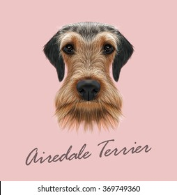 Airedale Terrier Dog Portrait. Vector illustrated Portrait of Airedale Terrier on pink background