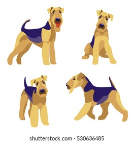 Airedale Terrier dogs set on a white background vector illustration. Character set.