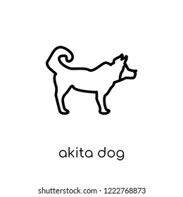 Akita dog icon. Trendy modern flat linear vector Akita dog icon on white background from thin line dogs collection, editable outline stroke vector illustration