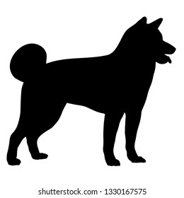 Akita dog in standing. Side view. Silhouette. Vector illustration