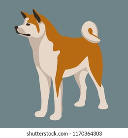 akita inu dog vector illustration  flat style  profile side
