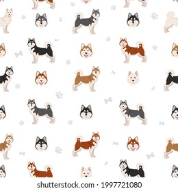 Alaskan malamute all colours seamless pattern. Different coat colors and poses set.  Vector illustration