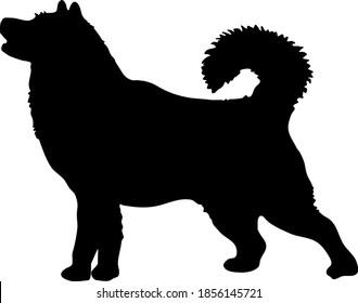 Alaskan Malamute Dog Silhouette Vector file