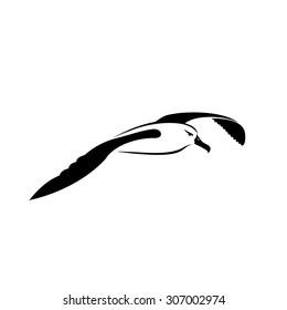 Albatross Tattoo Images Stock Photos Vectors Shutterstock