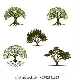 Albero vettoriale, abete, legno, quercia. Set di elementi di design del logo, badge, etichette e modelli di logotipo per la tua azienda, Green Oak Silhouette di un albero, Vector logo design