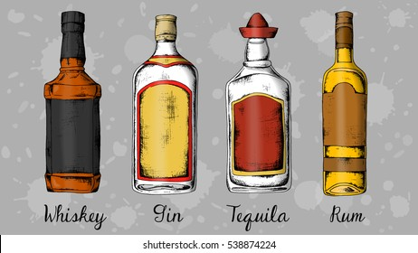 Alcohol set: whiskey, gin, tequila, rum. Sketch style vintage illustration.
