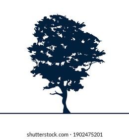 Alder tree isolated silhouette. Black on white. Detailed vector illustration
