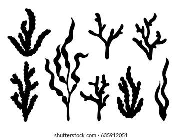 Alga silhouette vector set