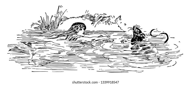 Alice in Wonderland this scene shows a female swimming in water and going towards rabbit vintage line drawing or engraving illustration