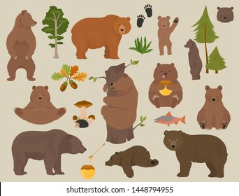 All bear species in one set. Bears in forest collection. Vector illustration