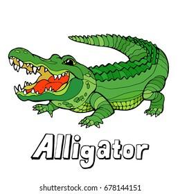 Alligator cartoon stock vector illustration on white background