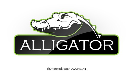 Alligator on a white background. Vector illustration