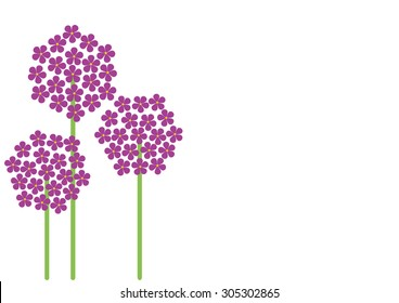 Allium exotic flowers vector