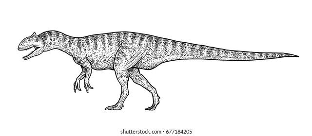 Allosaurus illustration, drawing, engraving, ink, line art, vector