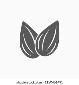 almond icon, almond vector