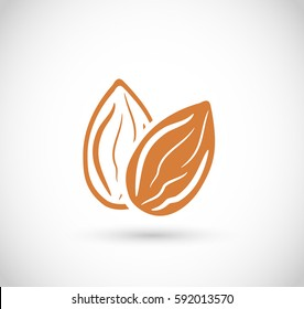 Almond icon vector