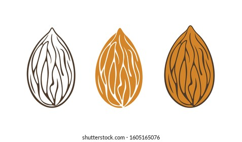 Almond logo. Isolated almond on white background