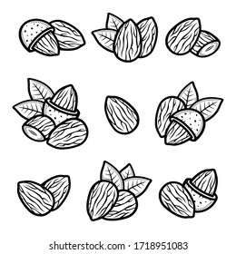 Almond set. Collection icon almond. Vector