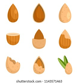 Almond walnut oil seed icons set. Flat illustration of 9 almond walnut oil seed vector icons isolated on white