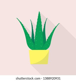 Aloe plant pot icon. Flat illustration of aloe plant pot vector icon for web design