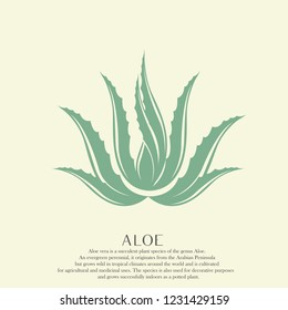 Aloe plant.Natural element logo representing aloe leaves.Vector green icon isolated on light background.