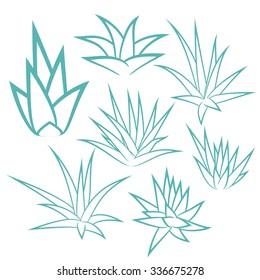 Aloe vera, agave, bush, succulent plant, flower set isolated on white background. Vector illustration.