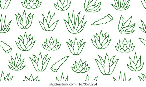 Aloe vera background, agave plant seamless pattern. Succulent wallpaper with line icons of aloevera leaves. Herbal medicine vector illustration green white color.