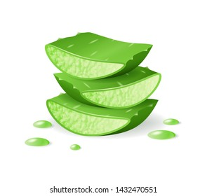 Aloe Vera cut pieces, realistic green plant, leaves and cut pieces with juice drops, isolated on white background, vector illustration